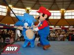 Wrestling: Sonic vs Super Mario